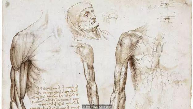 达芬奇手稿
