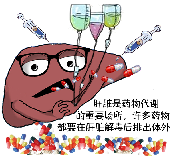 多吃感冒药会中毒?