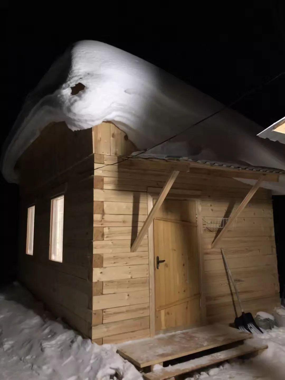 世界上唯一的淡水海豹,竟然有人潜入保护区偷窥他们洗澡···