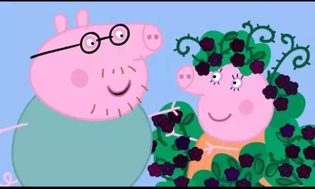 """""""有人以至说:《小猪佩奇》胜过万本教育书"""