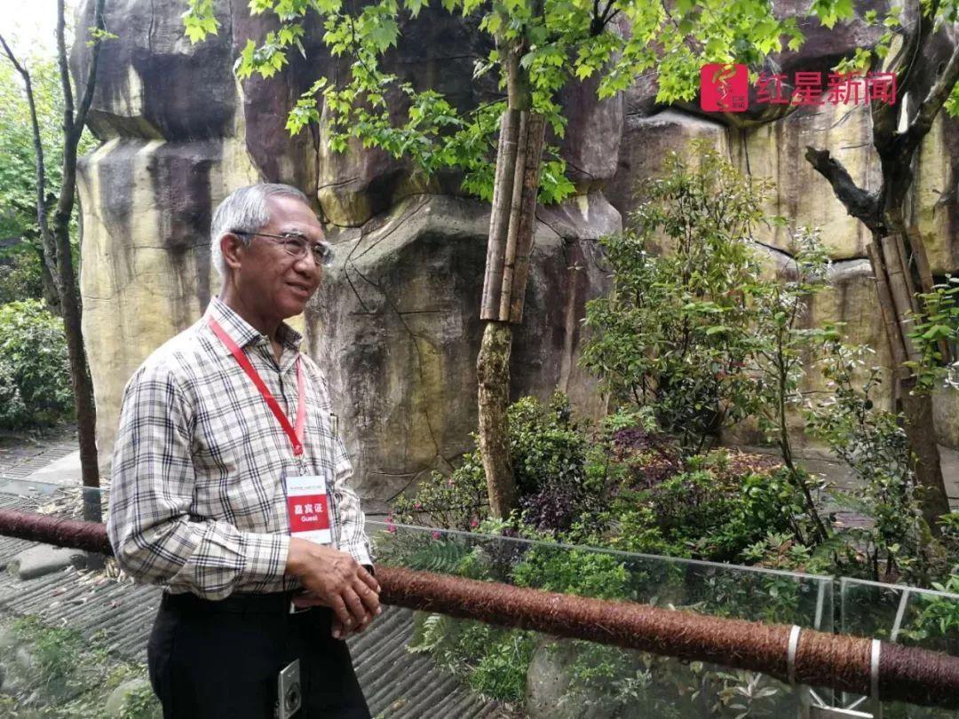 """红星专访丨曼谷市长首席顾问:曼谷清理街边摊贩,""""吃货""""不会受影响"""