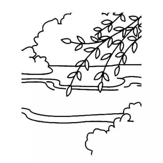 小学生柳树简笔画图片 柳树简笔画 简笔画大全