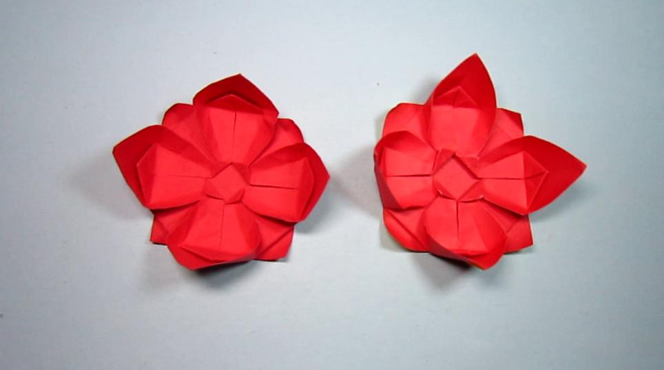 怎样折纸花,一张纸折出美丽的花朵,纸艺手工花的折法