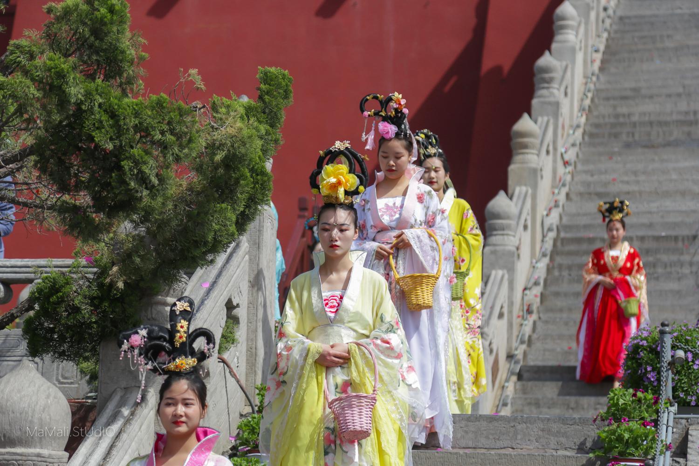 因花朝节而种花养花的景区不少,这一个因位于六朝皇宫所在地,最是成功