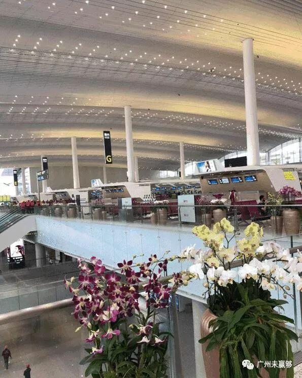 世界级巨无霸枢纽来了,白云机场T2航站楼抢先剧透