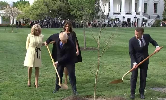 马克龙与特朗普一起种树又夜游,但是心里各自打着小算盘啊…-雪花新闻