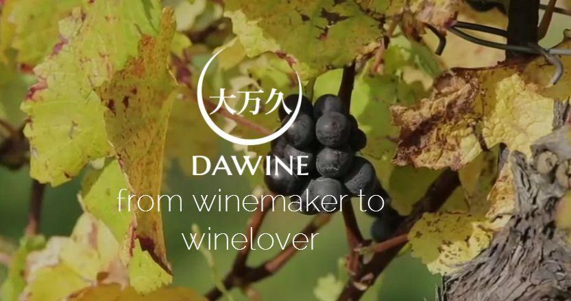葡萄酒供应商携软件商布局区块链_着眼红酒验真伪