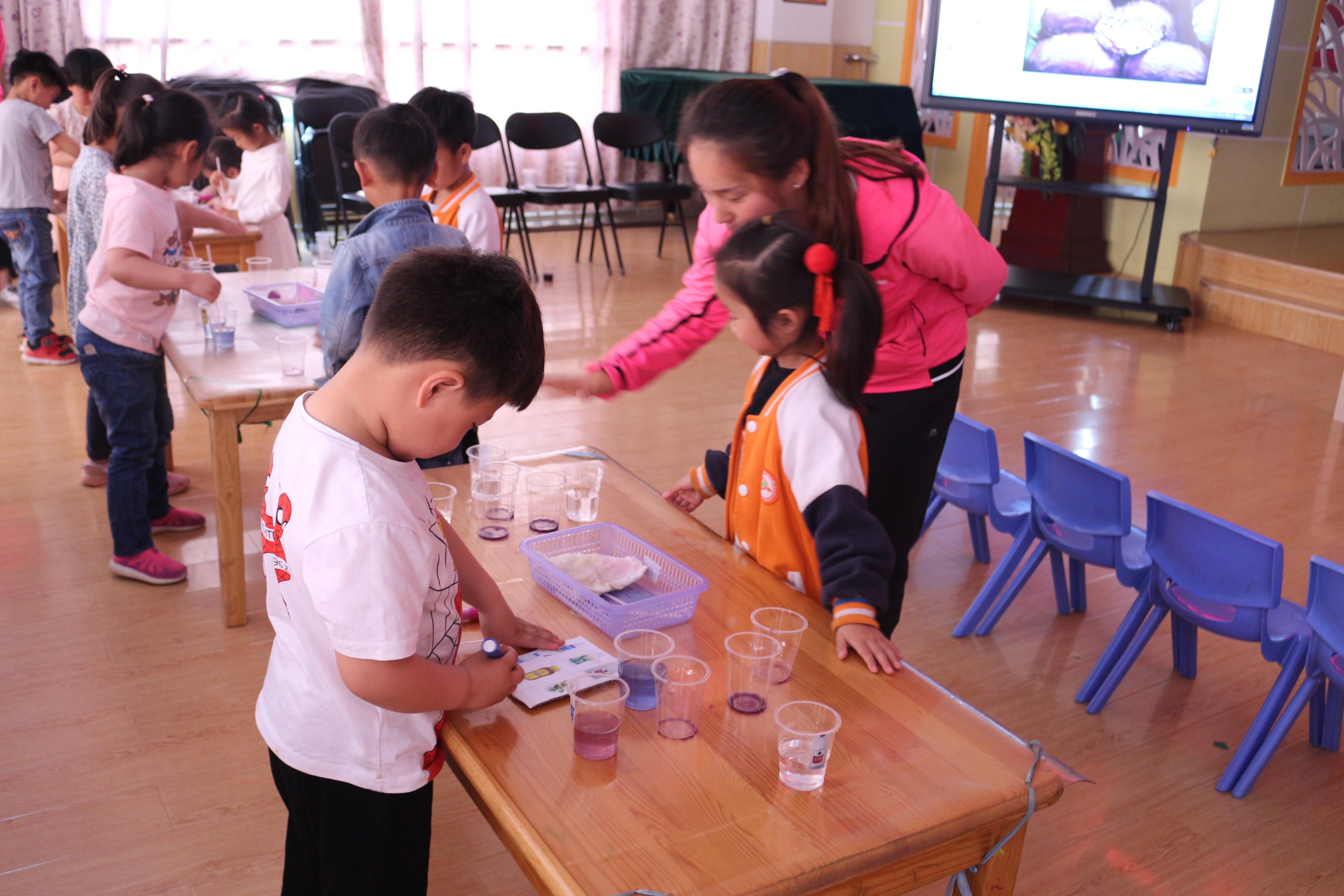 花园口镇中心学校科学优质课评比活动