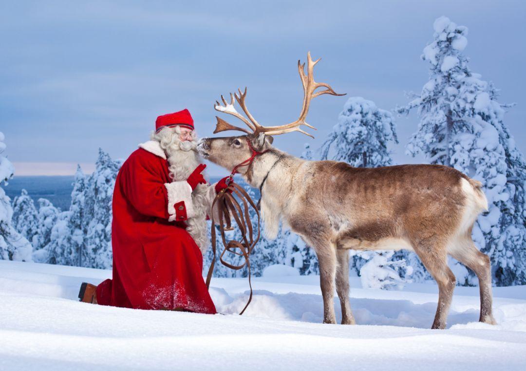 趣味游学 | 体验优质插班教育,寄宿当地家庭,学习滑雪技巧,了解极地动物...做一回地道芬兰人!