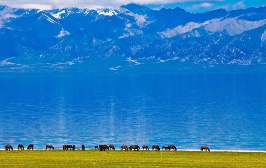 北疆最美的季节就要到来,千万别错过