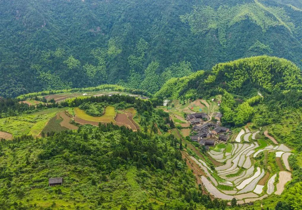旅游 正文  坤哥的图博 坐标:云南省昆明市东川区新田乡 醉那片绿