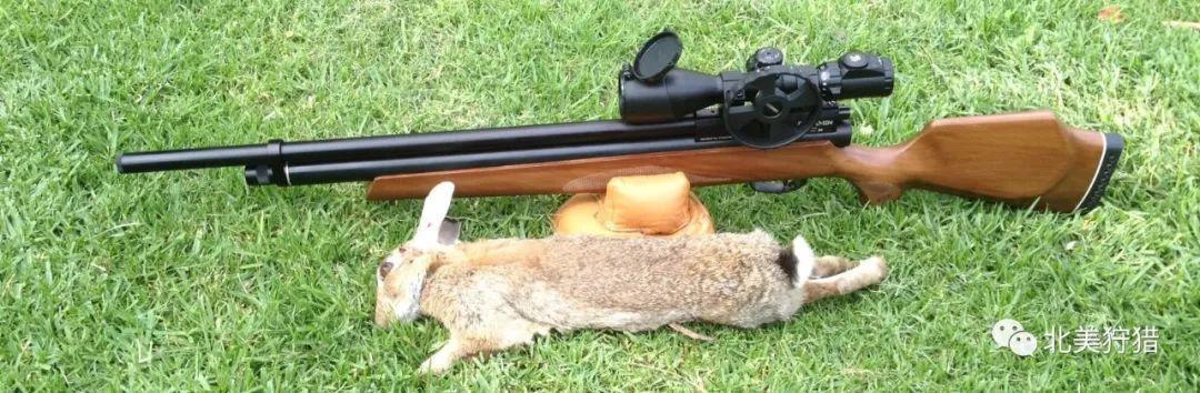 【狩猎装备营】5款低噪音气步枪推荐!