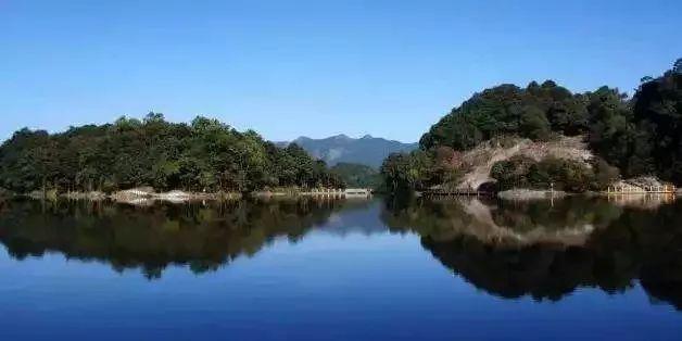 以体验原生态的感觉 ▼ 番禺区七星岗森林公园 我们的广州图片