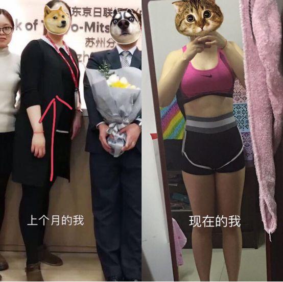郑多燕减肥舞系列