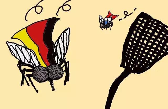 英语小知识 谚语中的动物屡成靶子,喵星人首当其冲!