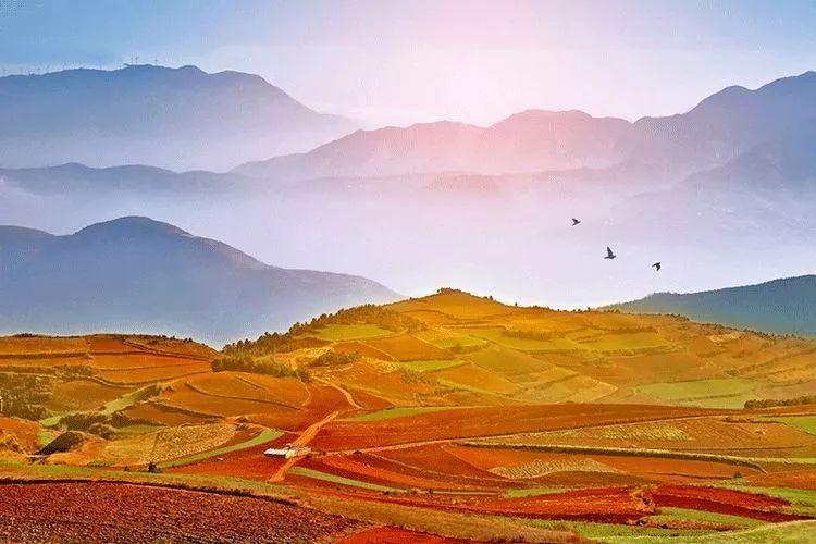 教育 正文  译文:堆造山的人开始于一筐泥土,而成陡高的峭壁;凿井的人