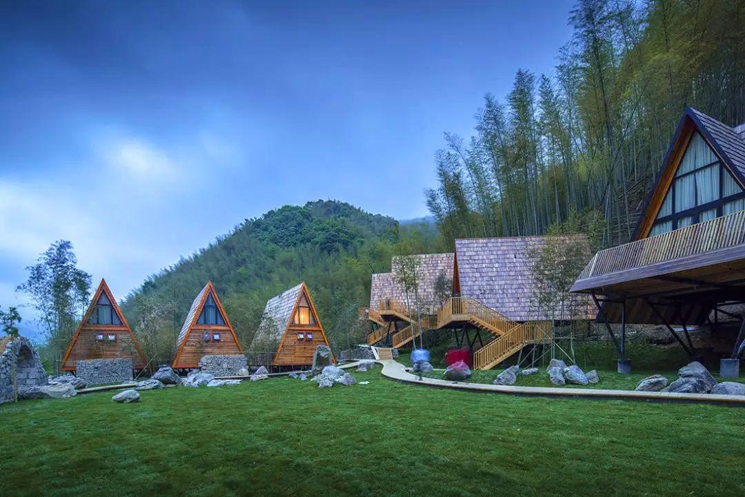 如何入住在从宁波余姚的森林里长出来的树蛙部落?图片