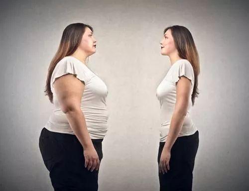 每个胖子身体里都住着一个健康的瘦子图片