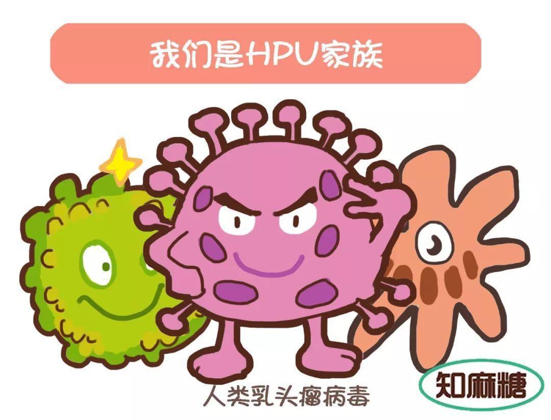 怎样预防hpv感染,注意什么