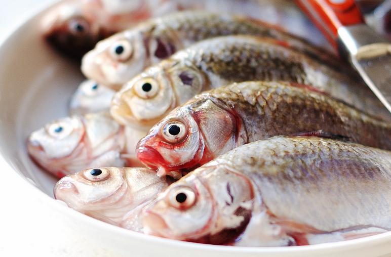 原标题:鲫鱼不仅仅能熬汤把刺处理好,老人孩子补蛋白补钙营养又健康 鲫鱼很常见,有些地方常称作鲫瓜子,随时能吃的零食一样。在淡水鱼类中,鲫鱼口感比较鲜美,营养丰富且有消炎滋补的作用,比如需要营养的孩子、体虚的老人、坐月子的产妇,尤其对于女性来说,不仅美容养颜,对哺乳期的女性来说,将鲫鱼熬成浓白鲜美的汤,更是催奶佳品,对孩子很有益。