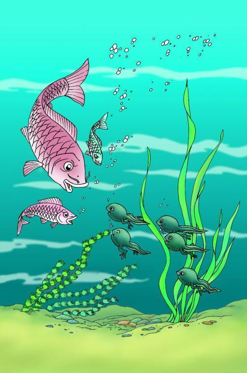 鲤鱼搞笑手绘图片
