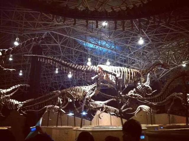 恐龙之乡在哪_从昆明出发云南最美的8条自驾线路,你最想去哪条?