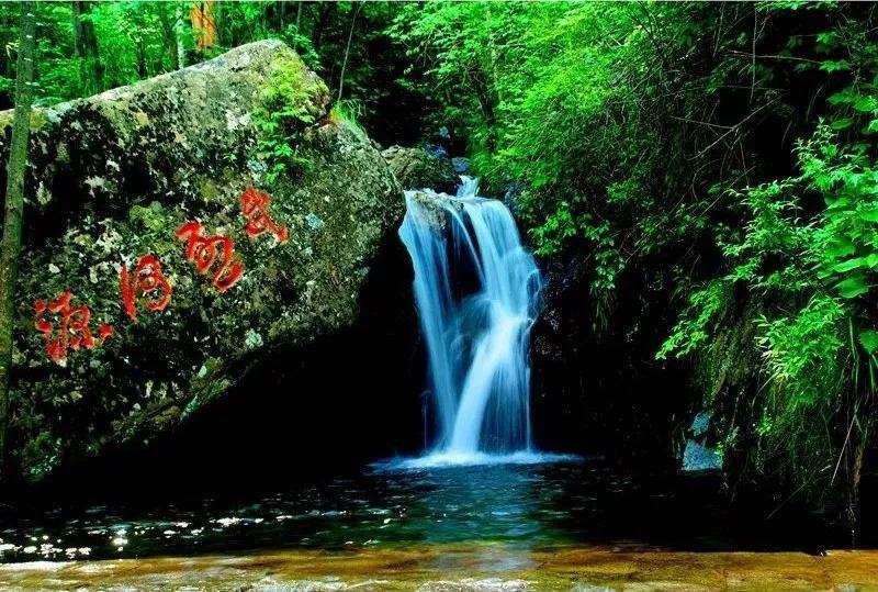 旅游 正文  辽河源国家森林公园位于承德市平泉县柳溪乡大窝铺林场