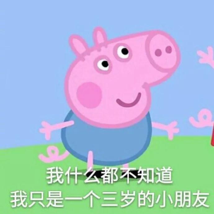 微信斗图 小猪佩奇表情包