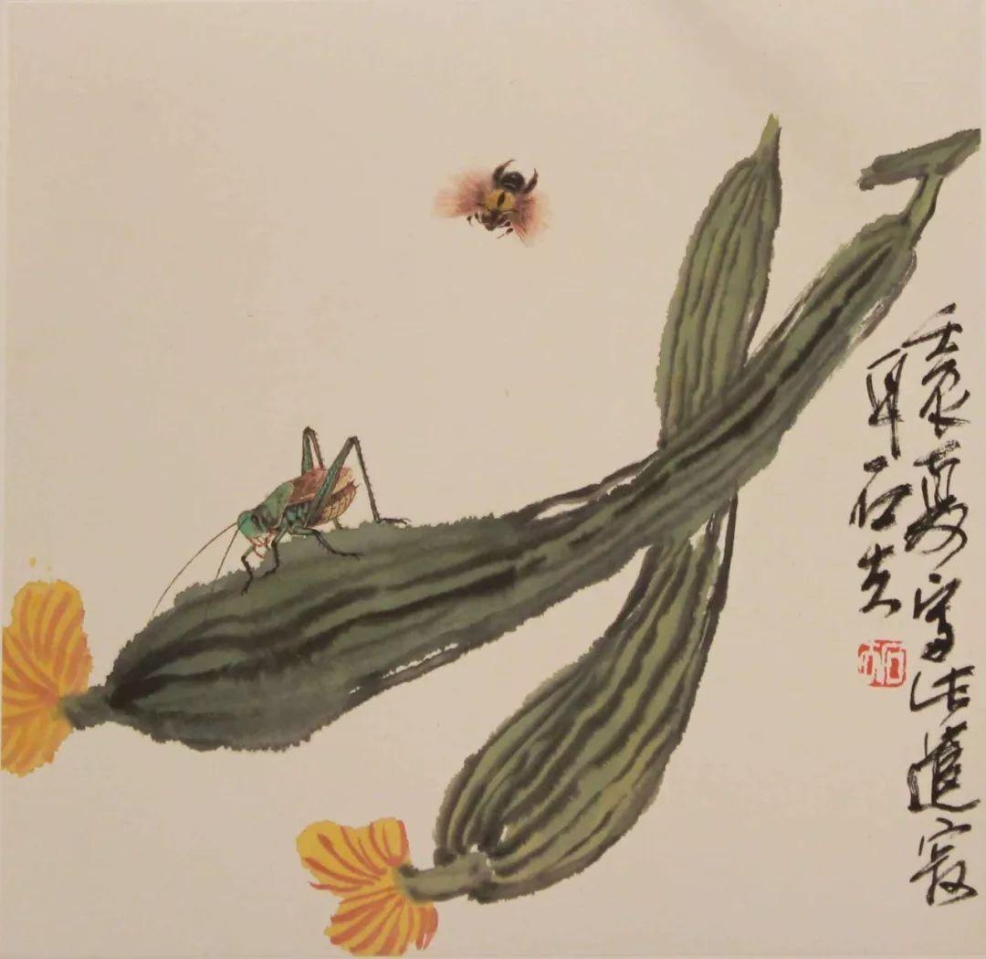 丝瓜昆虫图34x34cm图片