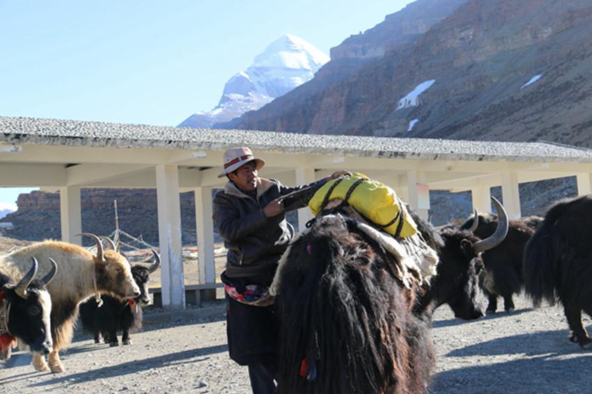 """""""千山之王""""脚下的小村庄 扔羊鞭走致富旅游路"""