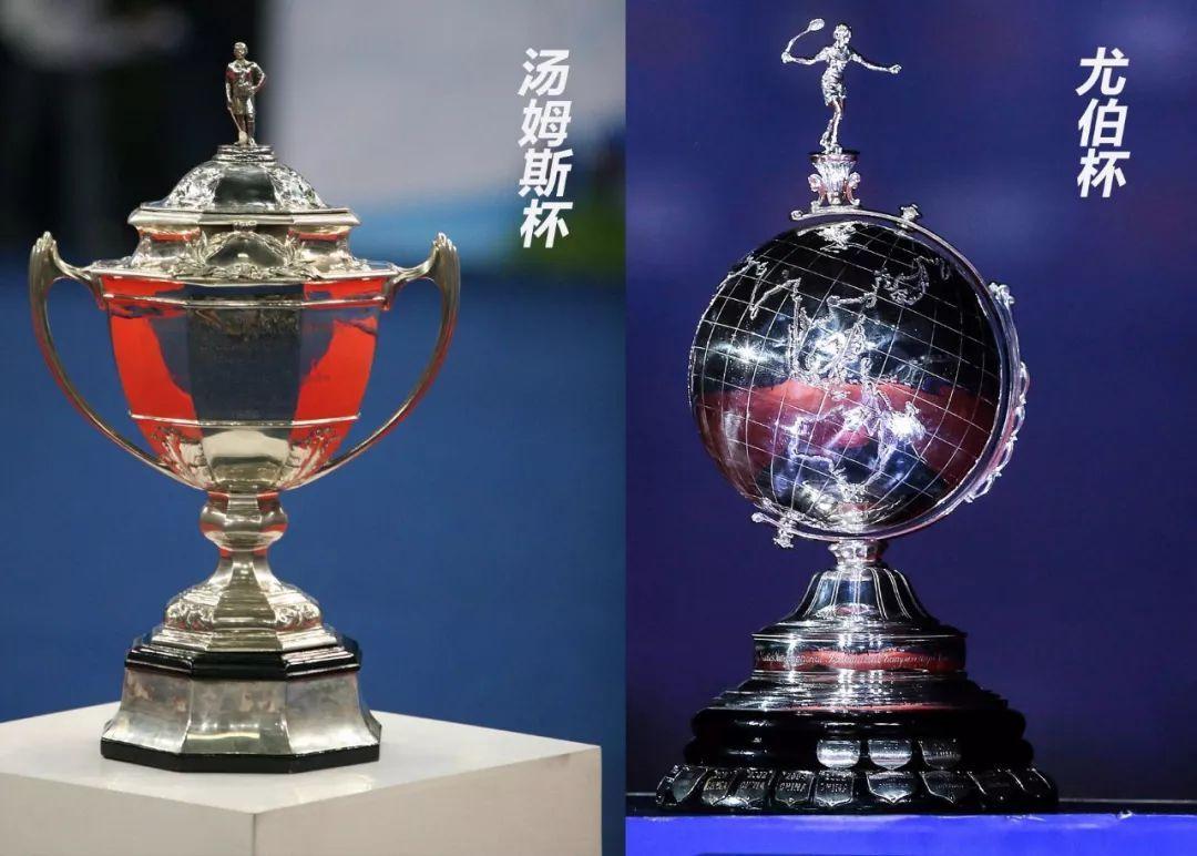 正文  体育界有各种各样的杯,比如说: 大力神杯 斯坦利杯 奥布莱恩杯