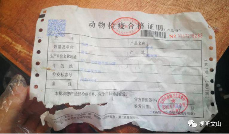 """猪肉流脓就""""切开""""!还不愉快地吃肉了?九久食品南京图片"""