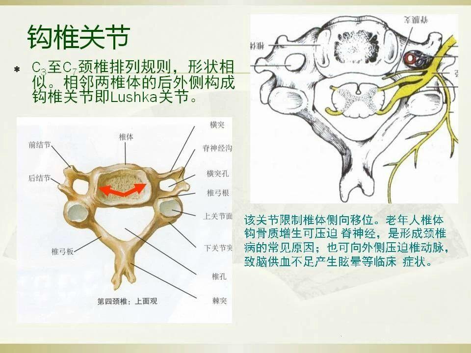 颈椎病的影像学诊断及分型汇总