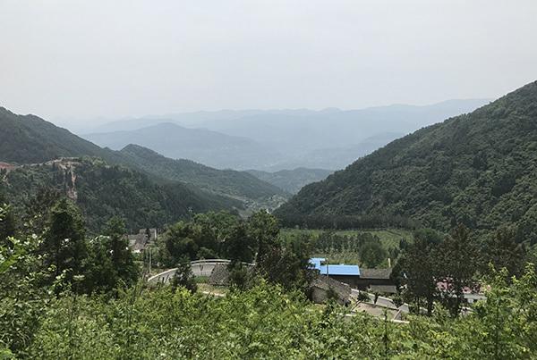 美丽中国长江行|一年四季有水果:重庆齐圣村靠特色农业脱贫