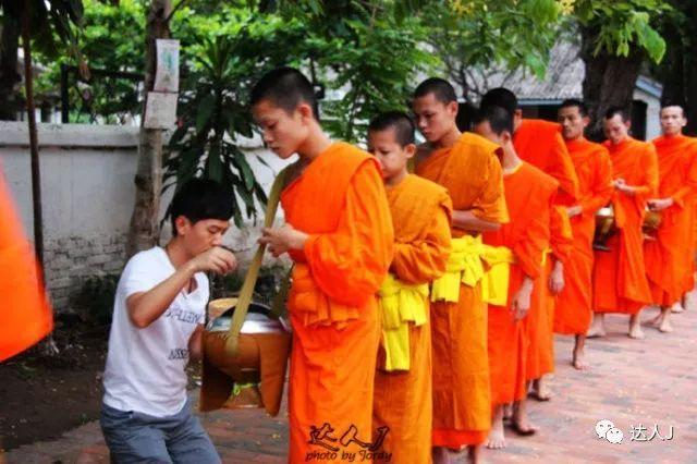 没见过人妖,你就没到过泰国吗!