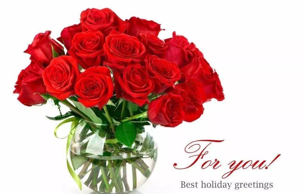 红玫瑰,也叫玫瑰花(学名:rosa rugosa)是蔷薇科蔷薇属植物,玫瑰原产是中国.