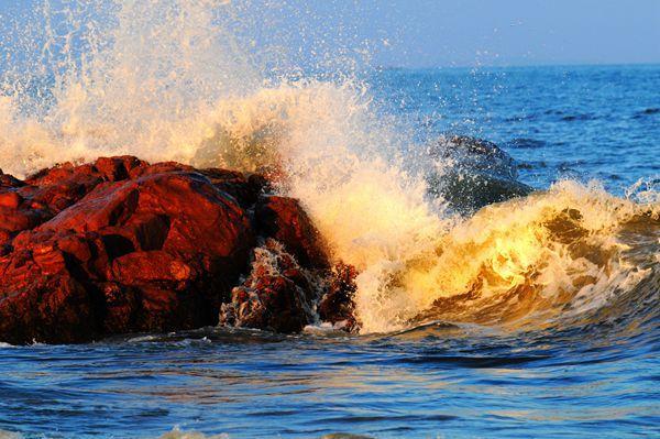 去上合峰会召开的地方青岛踏浪寻花 醉倒在海滨的万千神韵之中