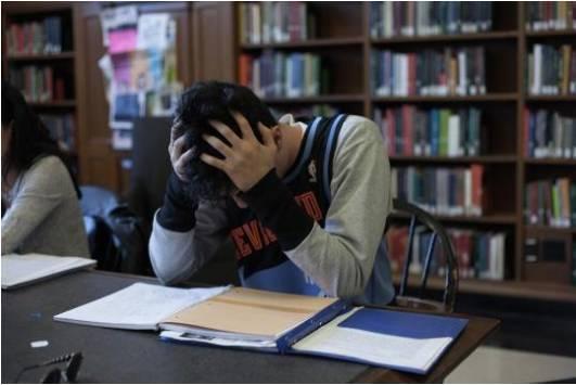 在顶尖名校读书是什么体验?常春藤学生说现实竟像这样糟糕…