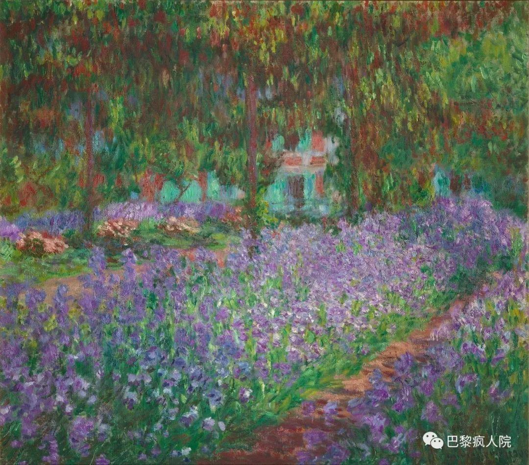壁纸 成片种植 风景 花 植物 种植基地 桌面 1080_950