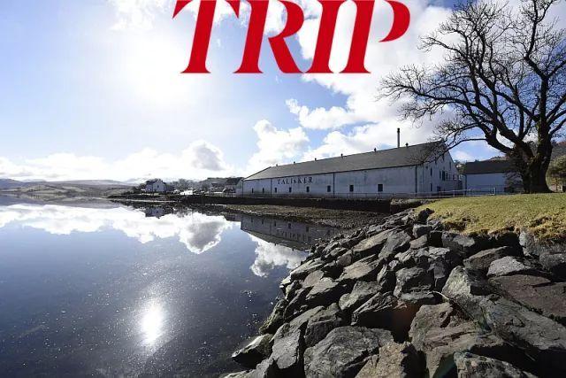 Trip丨一趟色香味绝佳的感官之旅,让你爱上威士忌