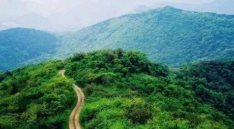 浦口区江浦街道老山国家森林公园图片