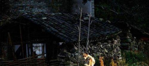中国最诡异恐怖的十大禁地,进的来出不去,尸骸遍地,不想死千万别去