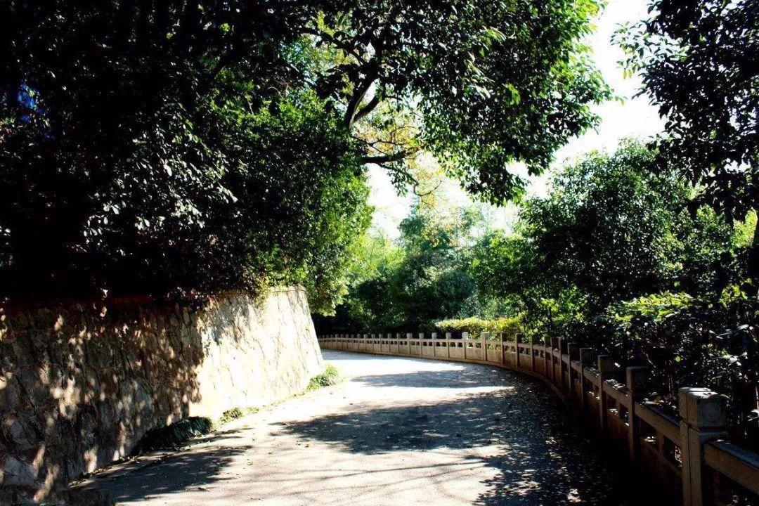 乌龙潭公园 精美手绘版线路示意图如下所示    不管是清凉山还是清凉