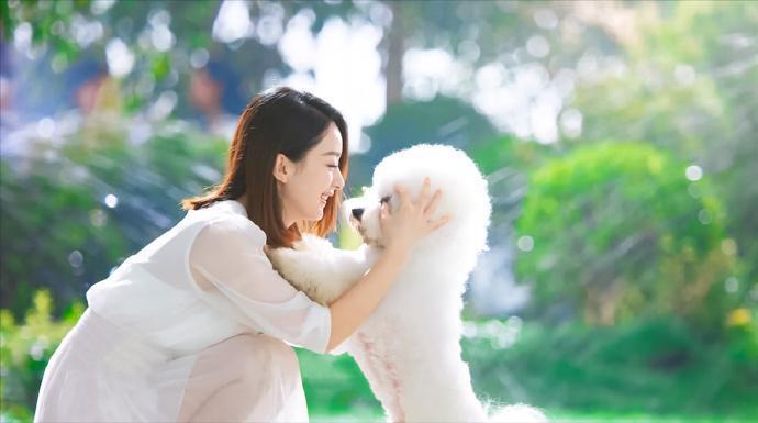 赵丽颖带自家狗狗拍广告