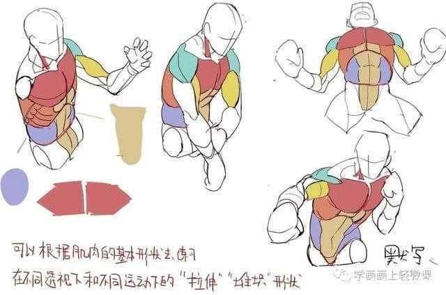 【热】二次元漫画人物人体动态入门教程_搜狐动漫