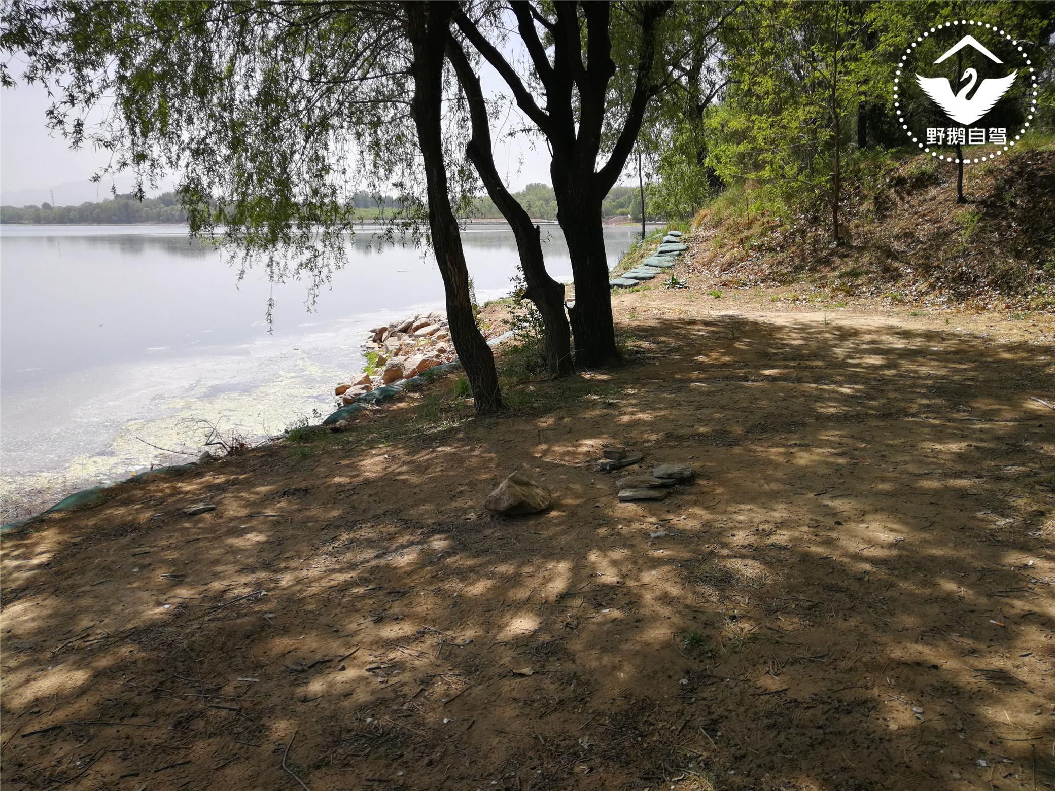 京郊这个滨河森林公园,散步,骑行,遛狗,关键免费图片
