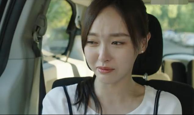《归去来》书澈接受不了事实远走 萧清被送上飞机后痛哭