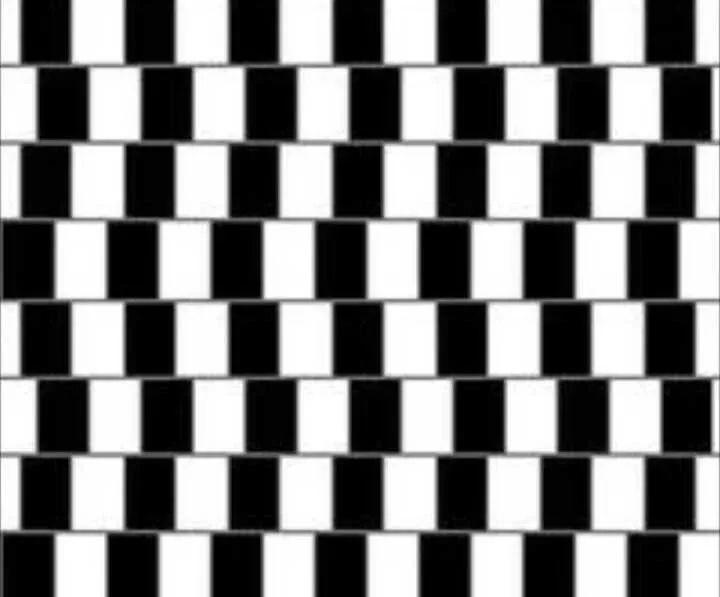 眼见不一定为实,欺骗你眼睛的奇特视觉错觉图来了!图片