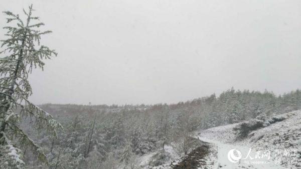 """大兴安岭""""爱情小镇""""新林区迎来降雪天气"""
