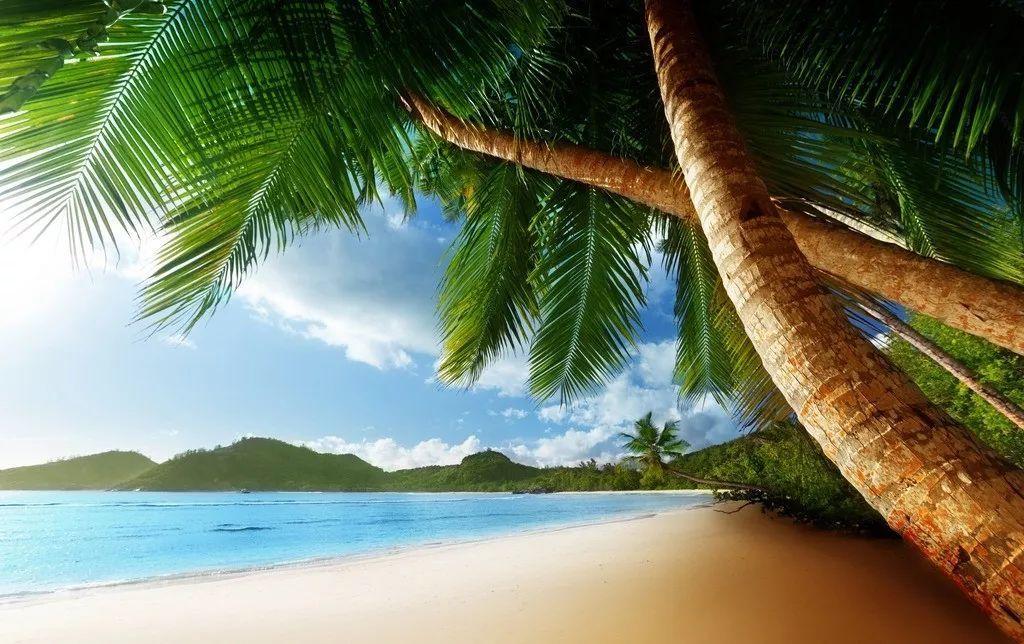颖儿和付辛博在巴厘岛结婚,明星为什么都喜欢去巴厘岛结婚 阳光 沙滩 海浪 ,还有对爱的畅想